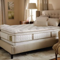 Mattress Cleaning Service for Lexington KY