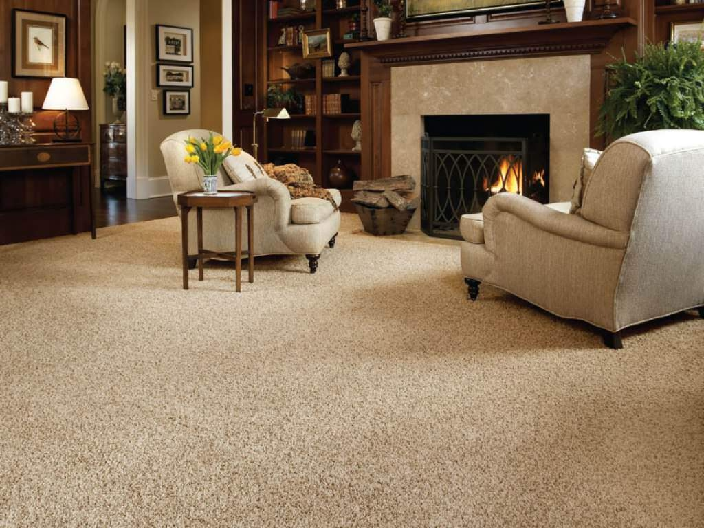 Carpet Cleaning Paris Kentucky